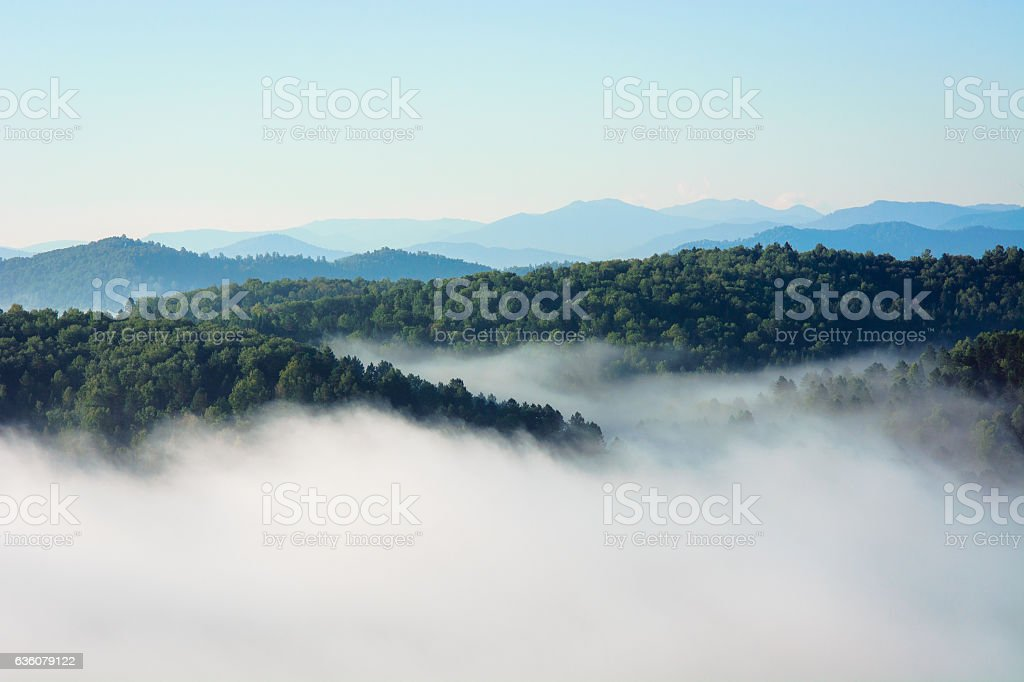 Morning fog in the mountains stock photo