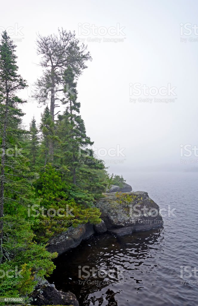 Morning Fog in the North Woods stock photo