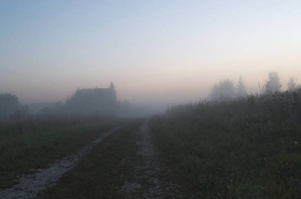 Morning fog on a country road stock photo