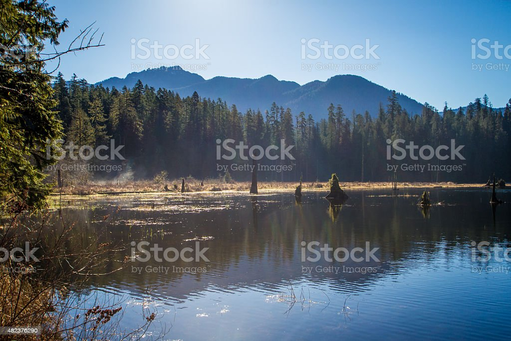 Morning Fog on Irely Lake stock photo