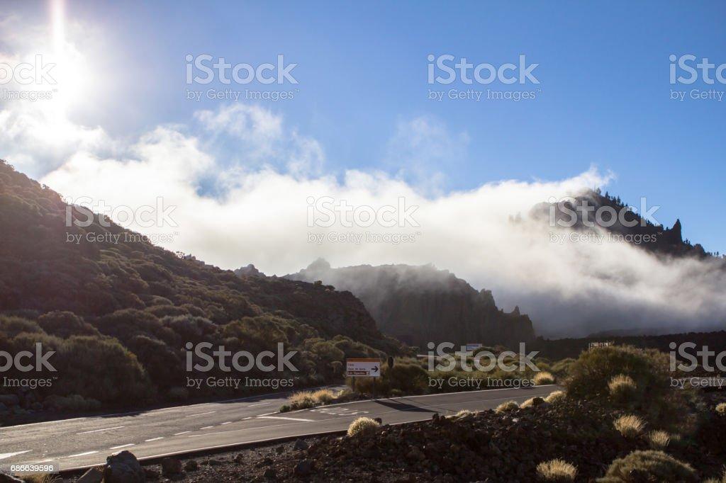 Morning fog foto de stock libre de derechos