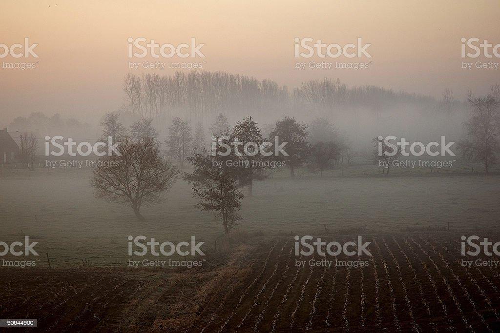 Morning fog royalty-free stock photo