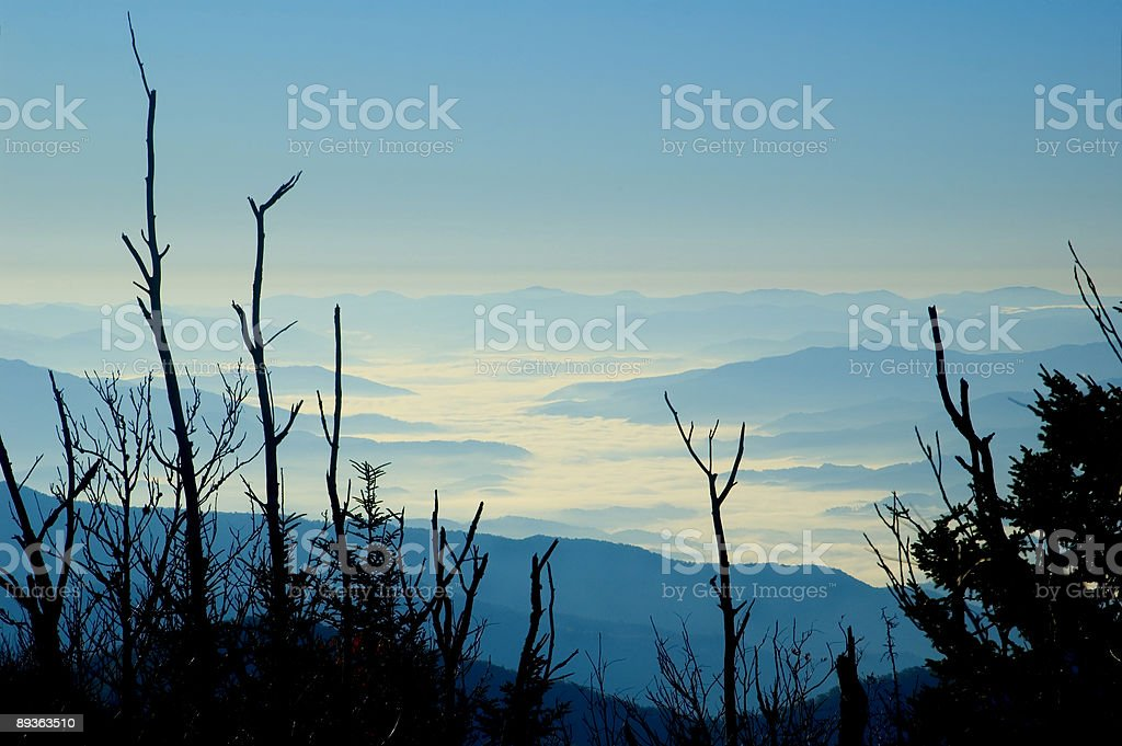 Morning Fog, Smoky Mountains royalty free stockfoto