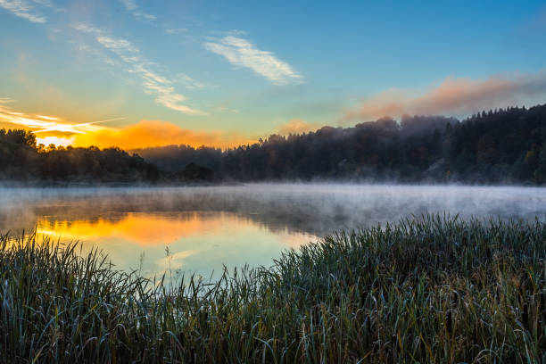 Morning foggy landscape of Nemunas river stock photo