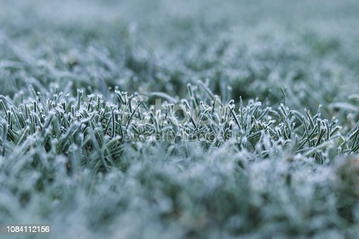 istock Morning frost on green grass at early winter or autumn cold morning. Cold seasonal weather. Copy space. Selective focus. Iced frozen grass on meadow at garden. Natural background 1084112156