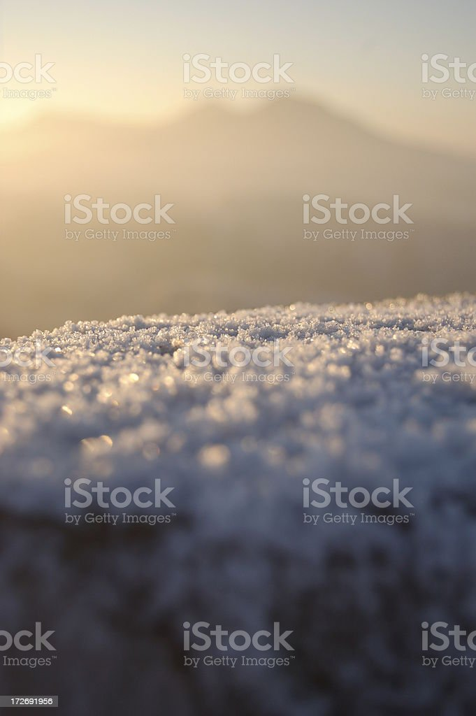 Morning Frost. stock photo