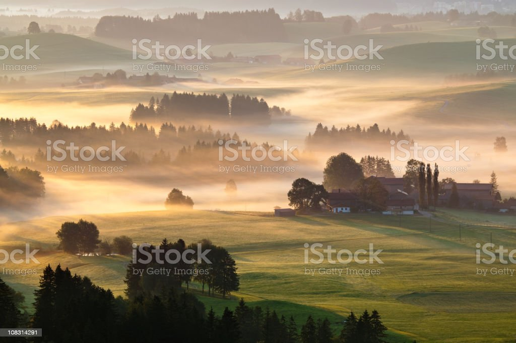 morning glory in Bayern, Deutschland – Foto