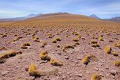 Morning highland landscape in Atacama desert. Chile.