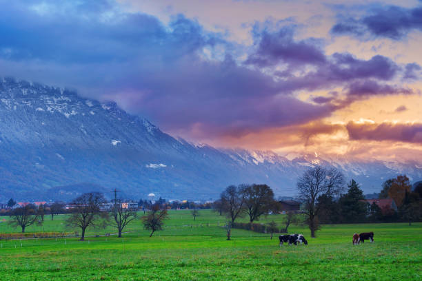 Morning in Interlaken stock photo