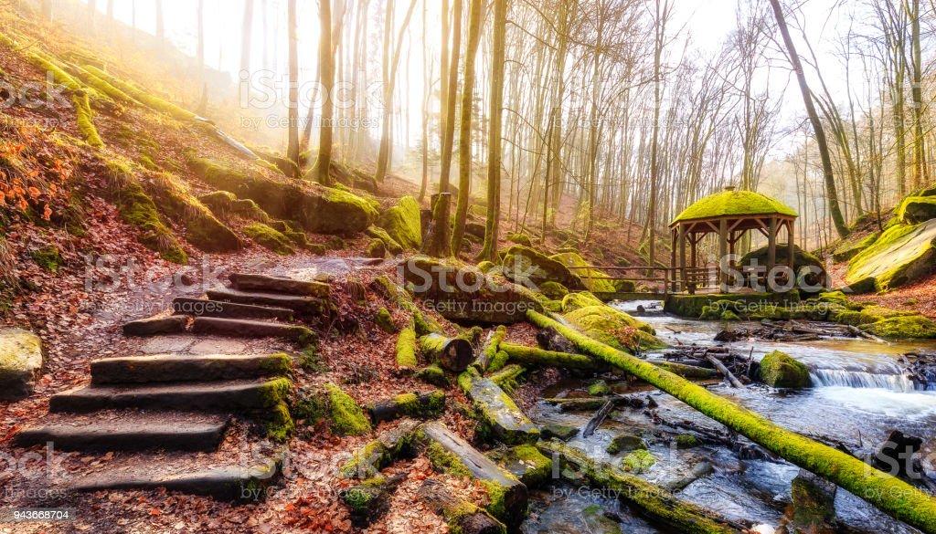 Morgen im Karlstal bei Trippstadt - Lizenzfrei Bach Stock-Foto
