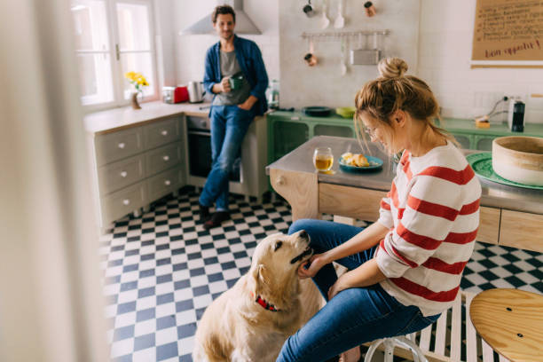 morning in the kitchen with our dog - routine foto e immagini stock
