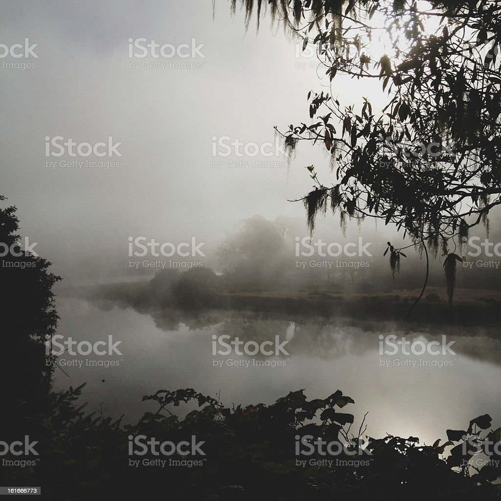 Morning Jenner River stock photo