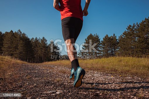 986840244 istock photo Morning jogging in a forest 1254014952