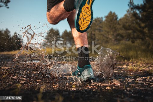 986840244 istock photo Morning jogging in a forest 1254752780