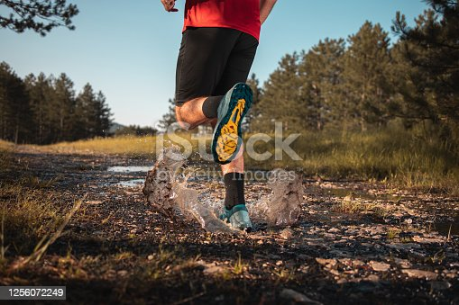 986840244 istock photo Morning jogging in a forest 1256072249