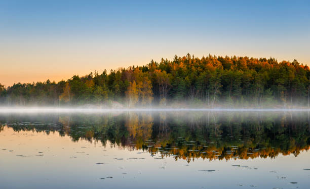 Morning lake with fog in autumn colors