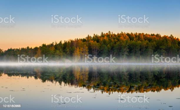 Photo of Morning lake with fog in autumn colors