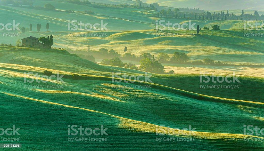 Morning landscape from Tuscany stock photo