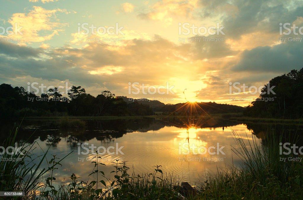 Morning landscape stock photo