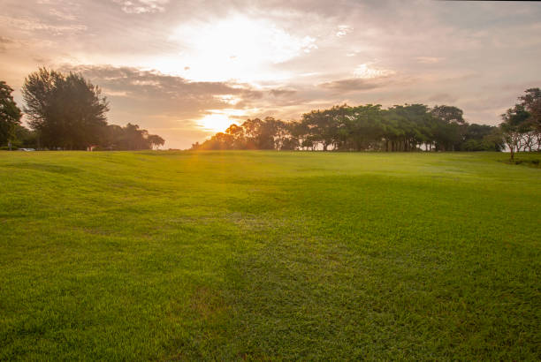 Morning light at Ratchaprapra Dam, Thailand A beautiful moment grass area stock pictures, royalty-free photos & images