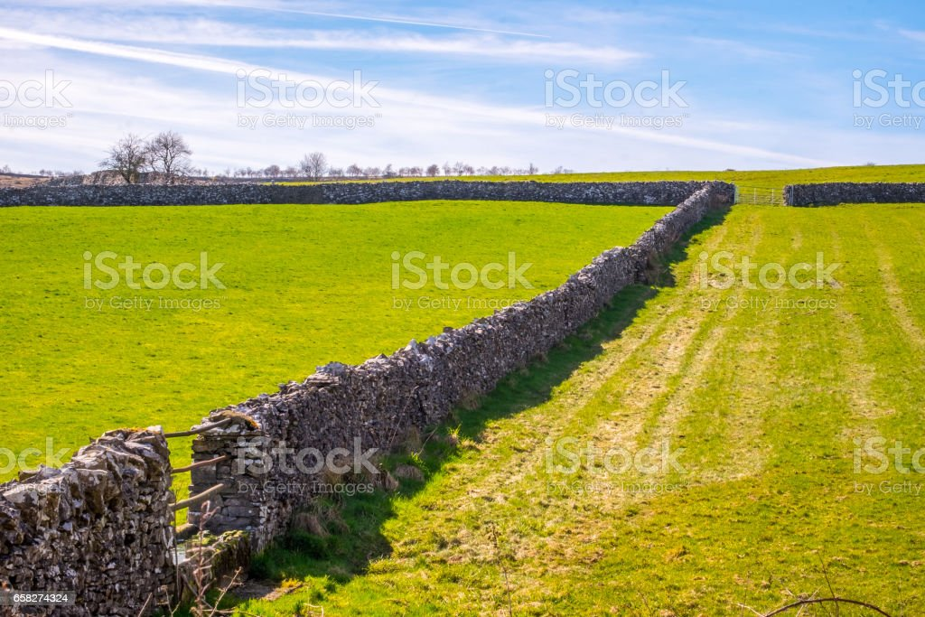 Morning light illuminating traditional dry stone wall in the Lake District, Cumbria. stock photo