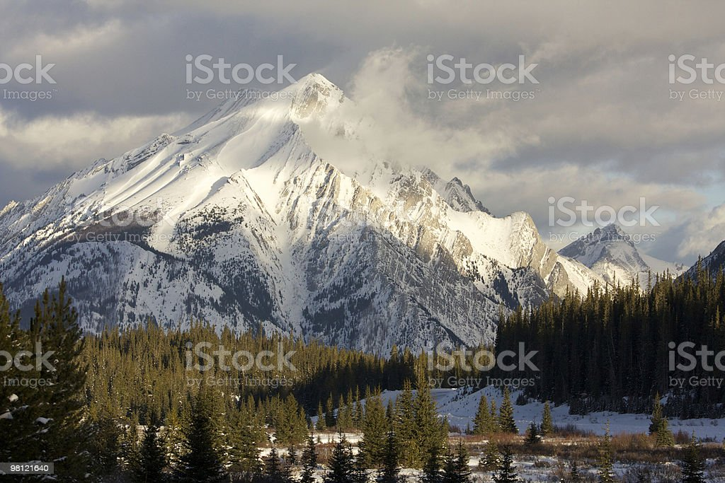 Morning light in Kananaskis royalty-free stock photo