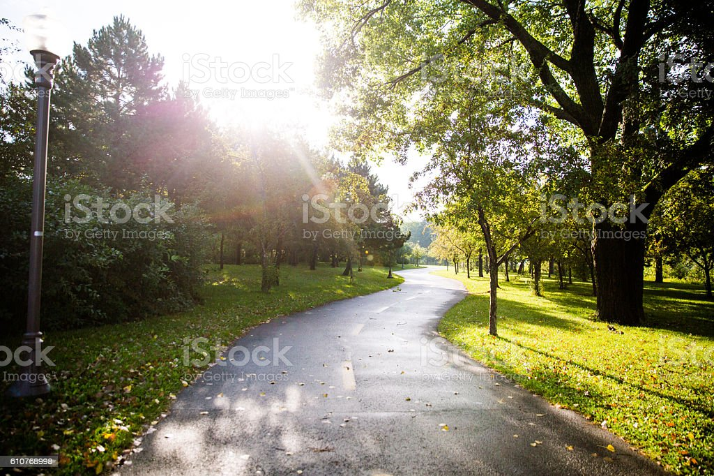 Morning light in the park stock photo