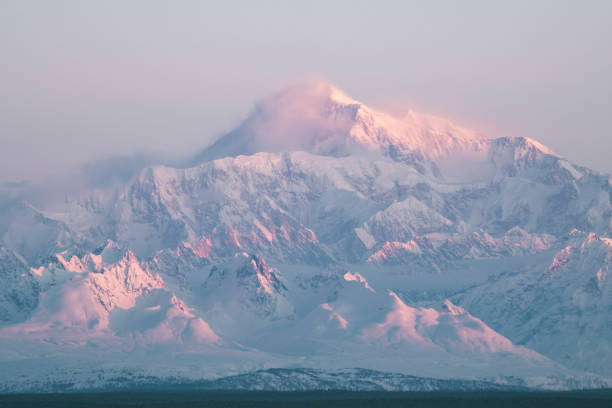 Morning Light on Mt. Denali in Denali National Park Winter morning sunrise looking over Mt Denali in Denali National Park atmospheric mood stock pictures, royalty-free photos & images