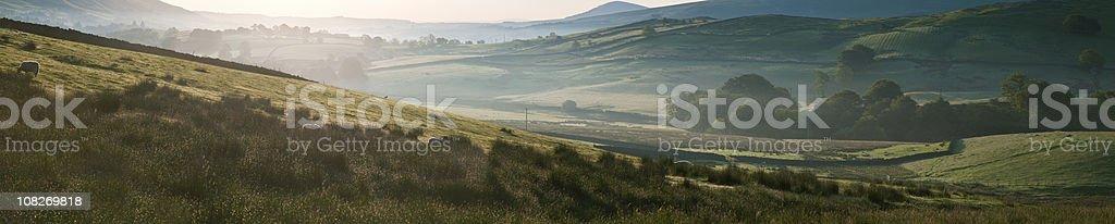 Morning light. stock photo