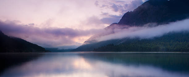 morning mist at lake plansee stock photo