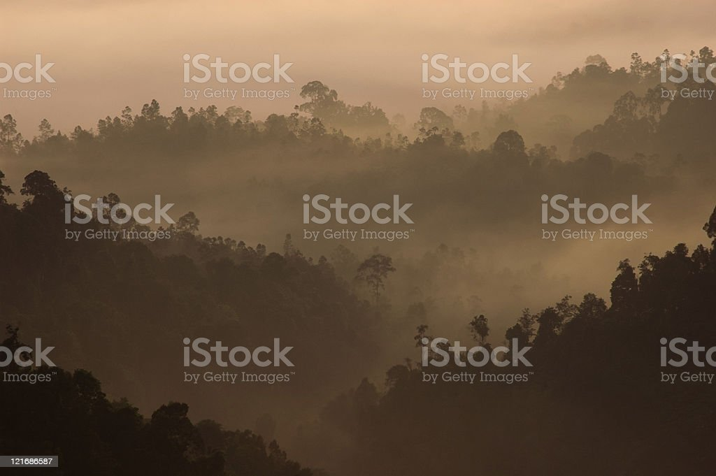 Morning Mist at Tropical Mountain Range, Malaysia royalty-free stock photo