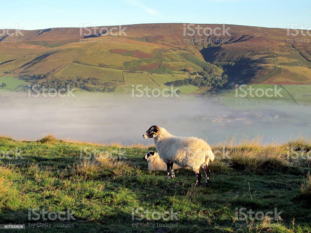 Morning mist in Edale valley. stock photo