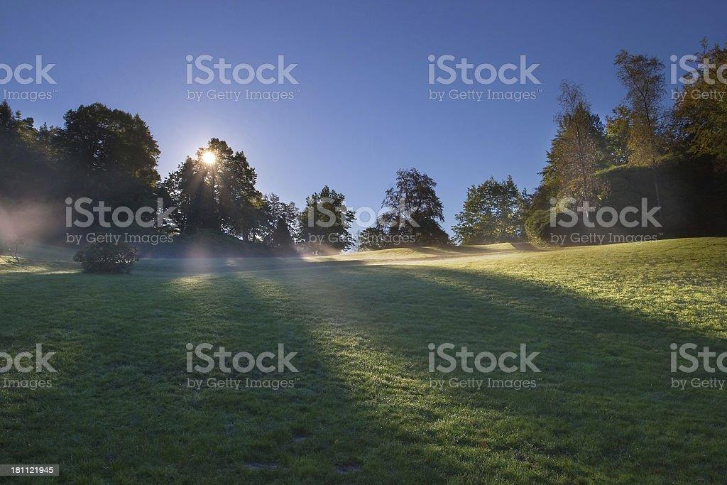 Morgen Nebel im park – Foto