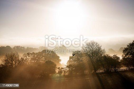 A single crow flies through the mist as the sun rises