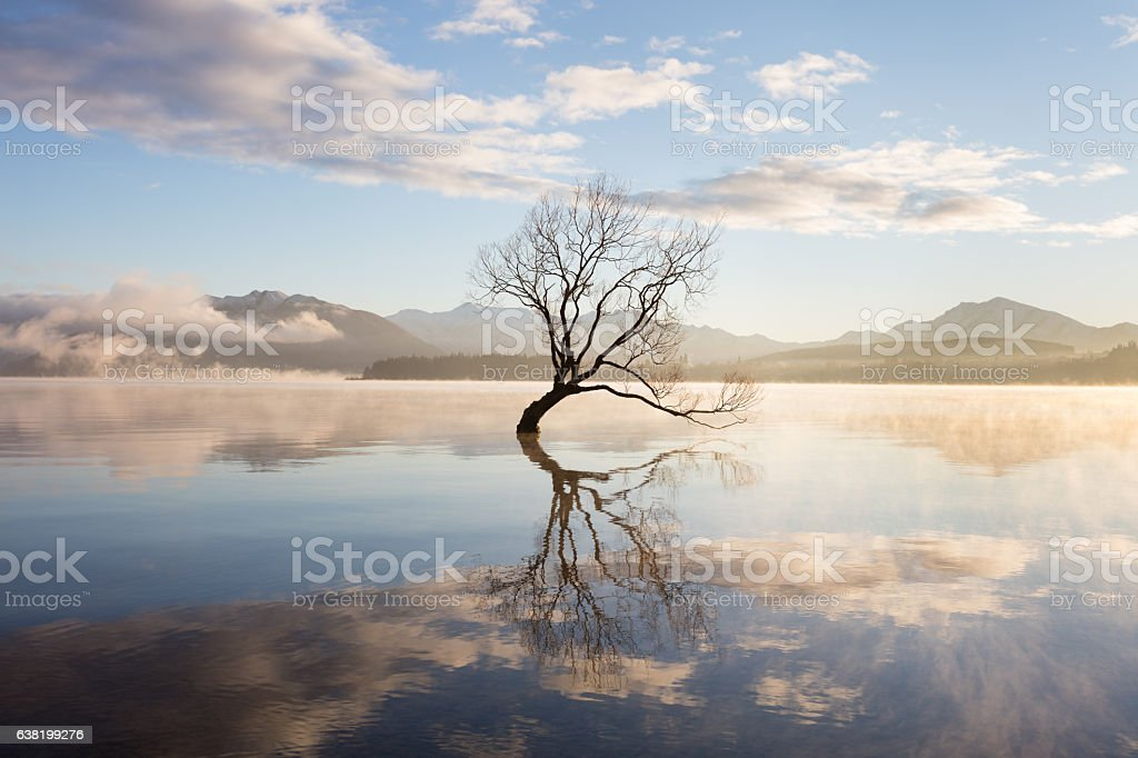 Morning mist on lake stock photo