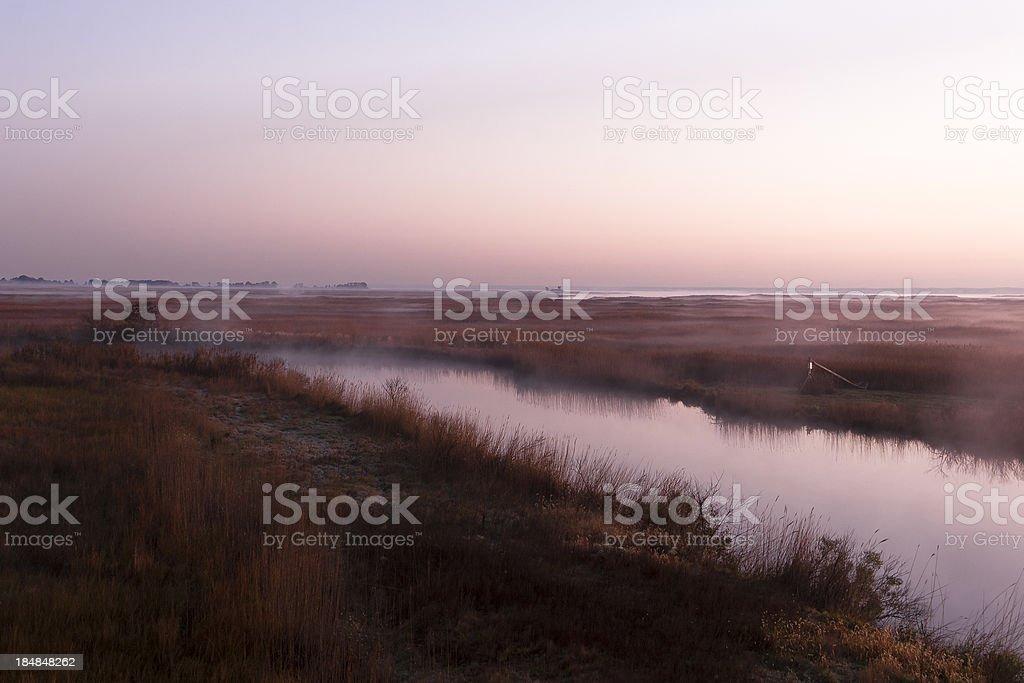 Morning Mist Over the Marsh, Sunrise (Dawn) stock photo