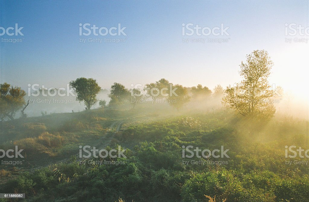 Morning mist over the river. Road through the autumnal forest stock photo