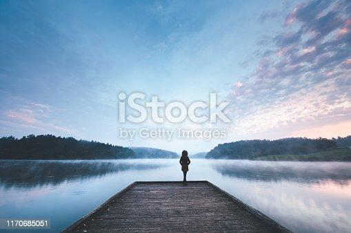 619670604 istock photo Morning Mist 1170685051