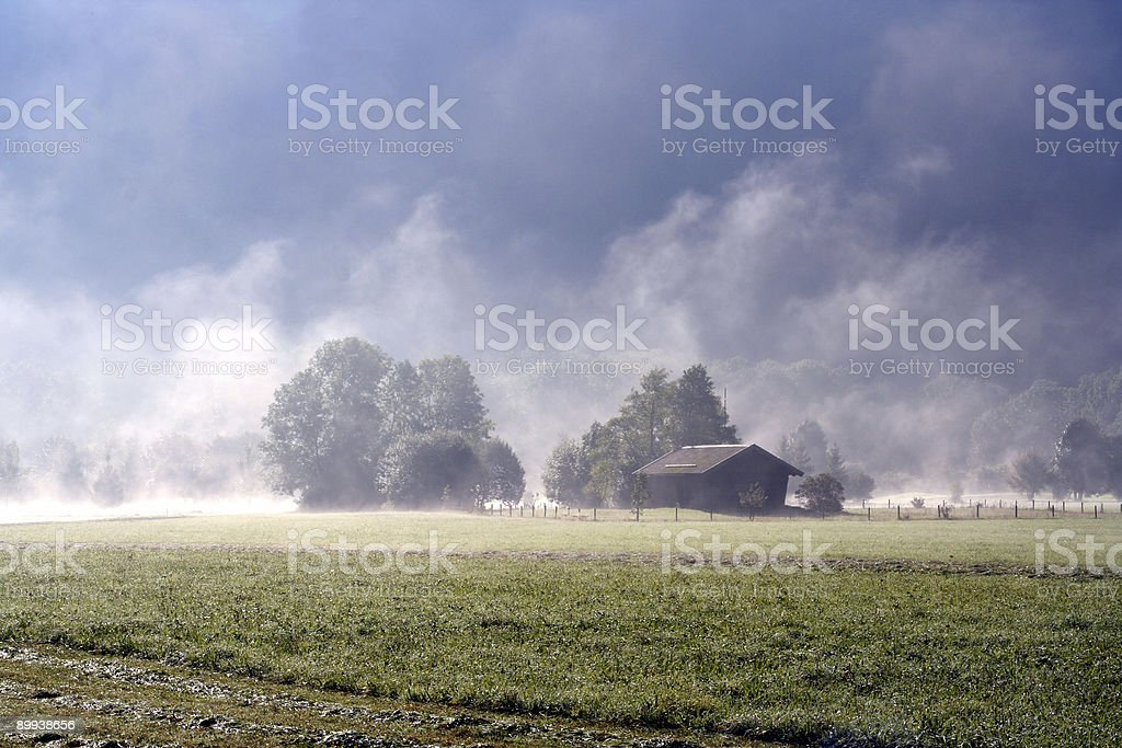 Morning mist royalty-free stock photo