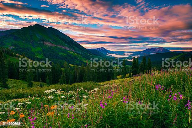 Morning of summer picture id514990693?b=1&k=6&m=514990693&s=612x612&h=sdqgwskr3fyecq0iwjopir8 pk 5tttwa51qu9zlmac=
