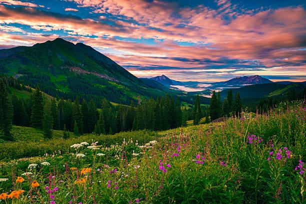 Morning of summer picture id514990693?b=1&k=6&m=514990693&s=612x612&w=0&h=hgbxbydjzuwpc1abvu96rh9wpp1mfqinvtoweeyuzqu=