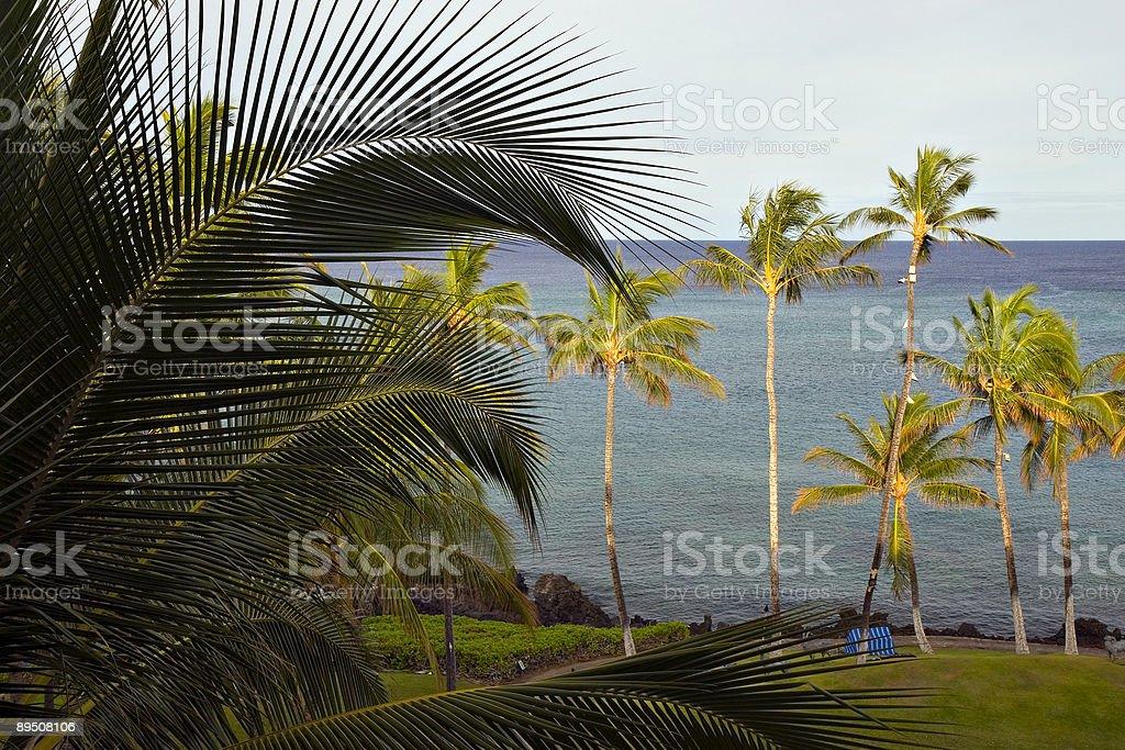 Morning on Hawaii Paradise Beach royalty-free stock photo