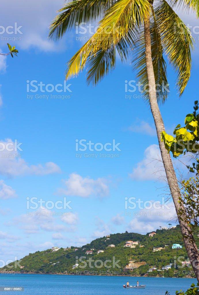 Morning on St Thomas Island near Magens Bay, US VI. stock photo