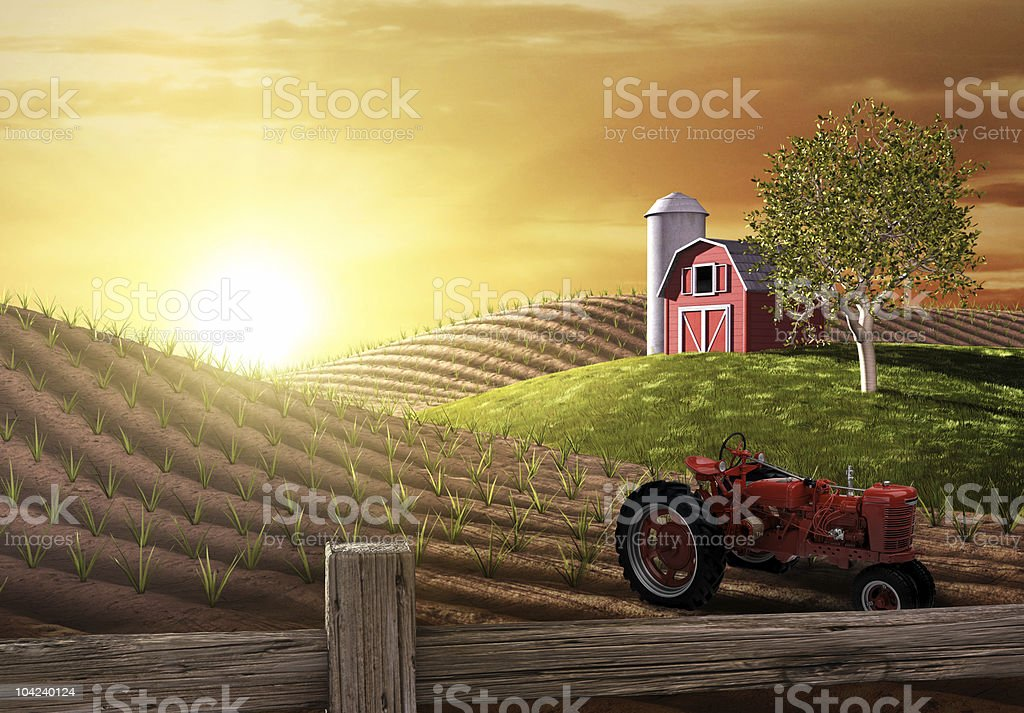 Morning on the Farm stock photo