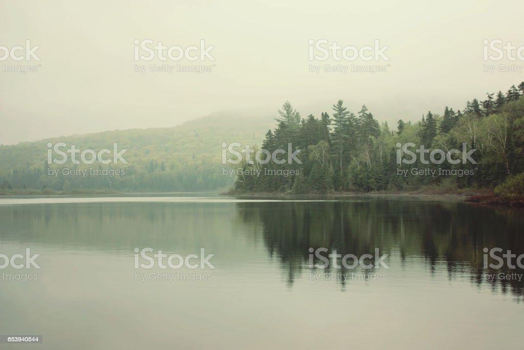 morning on the lake ストックフォト