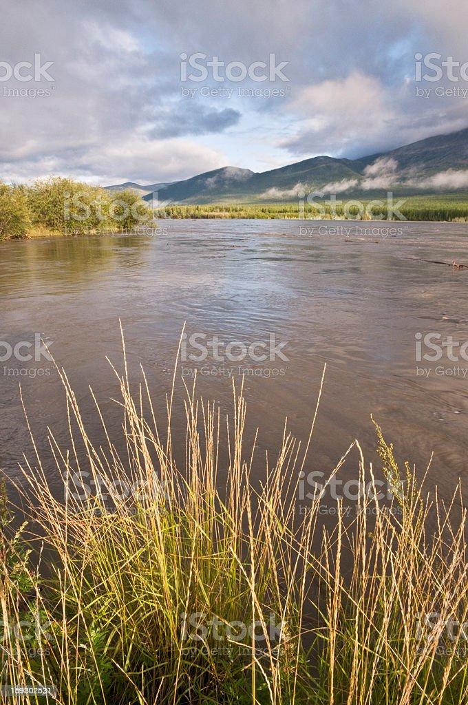 Morning on the river Indigirka. royalty-free stock photo