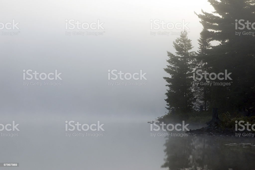 morning royalty-free stock photo