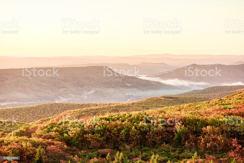 Morning pink warm yellow sunrise with sky and golden orange autumn foliage in Dolly Sods, Bear Rocks, West Virginia with overlook of mountain valley, fog, mist stock photo