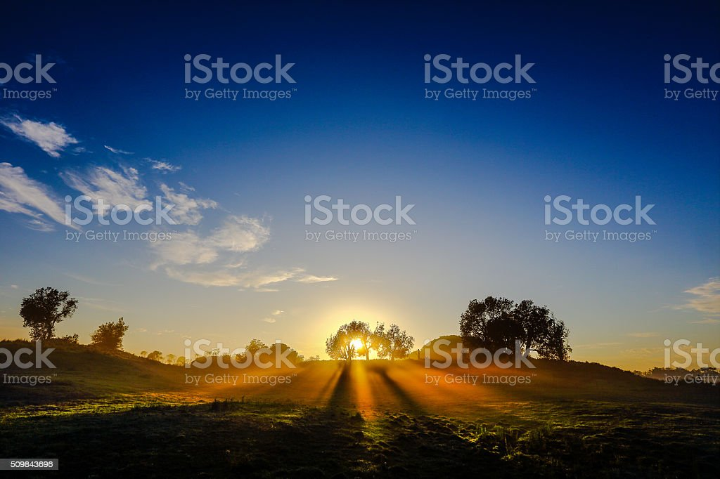 Morning Rays stock photo