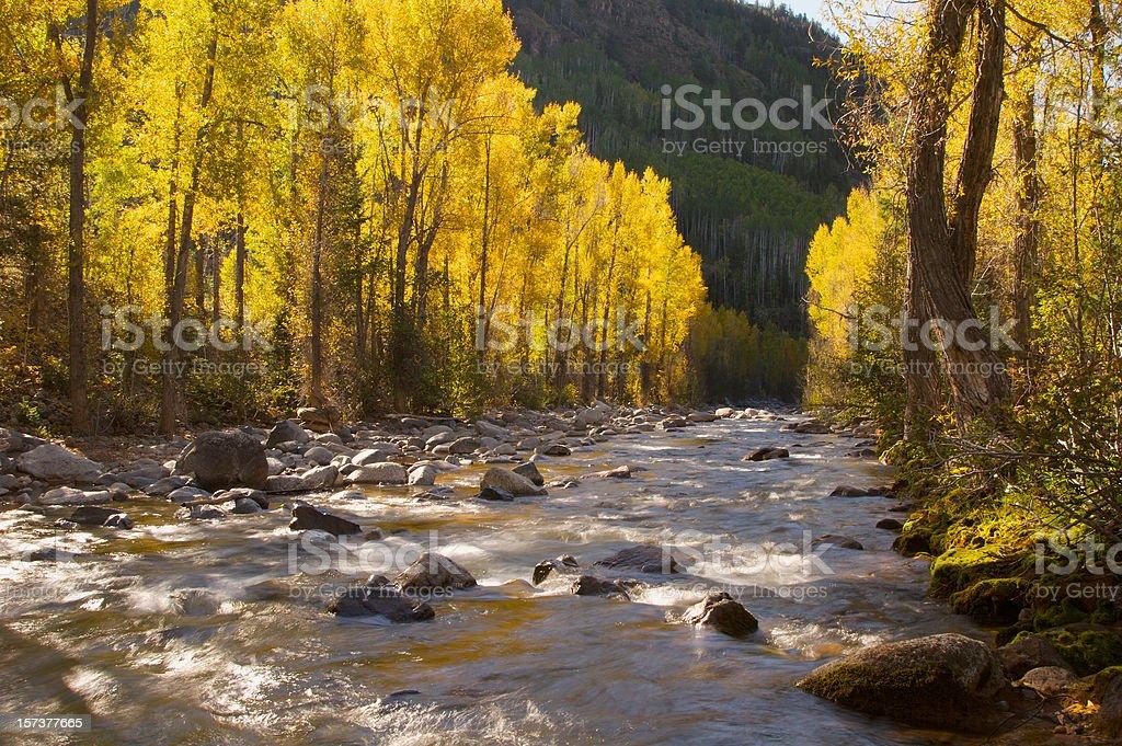 Morning River Scene royalty-free stock photo